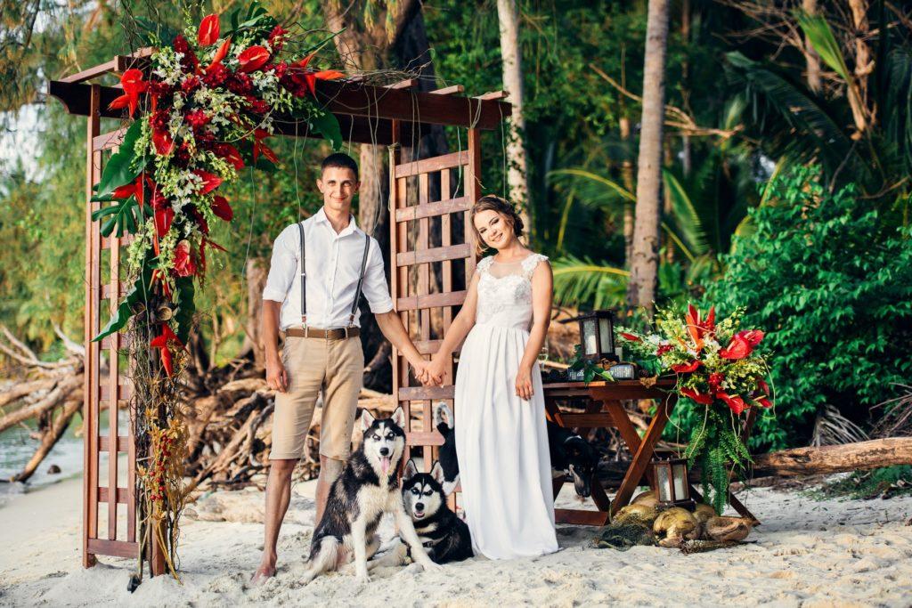 свадьба в лесу с собаками